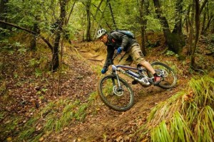 bike_shop_test_2016_bologna_1_web_w564_h376